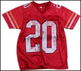 20 mesh jersey